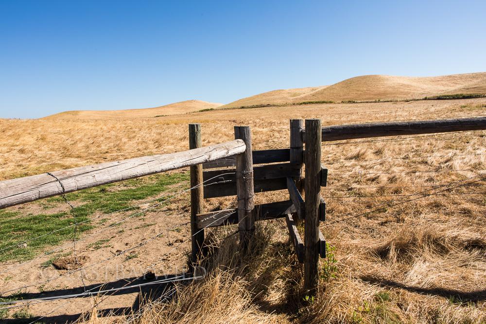 Zig-Zag cattle gates